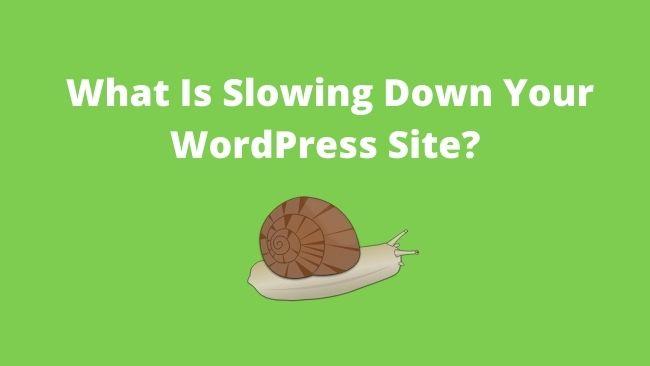 what-slows-wordpress-site